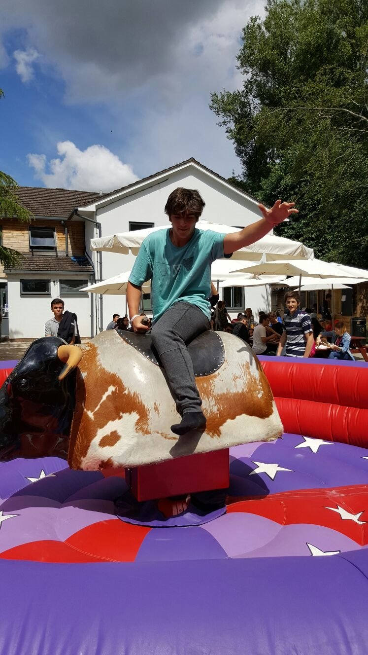 Bucking Bronco Amp Rodeo Bull Hire For Schools Amp Colleges