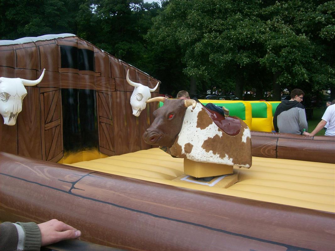 Rodeo Bull Bucking Bronco Includes Staff Bouncy