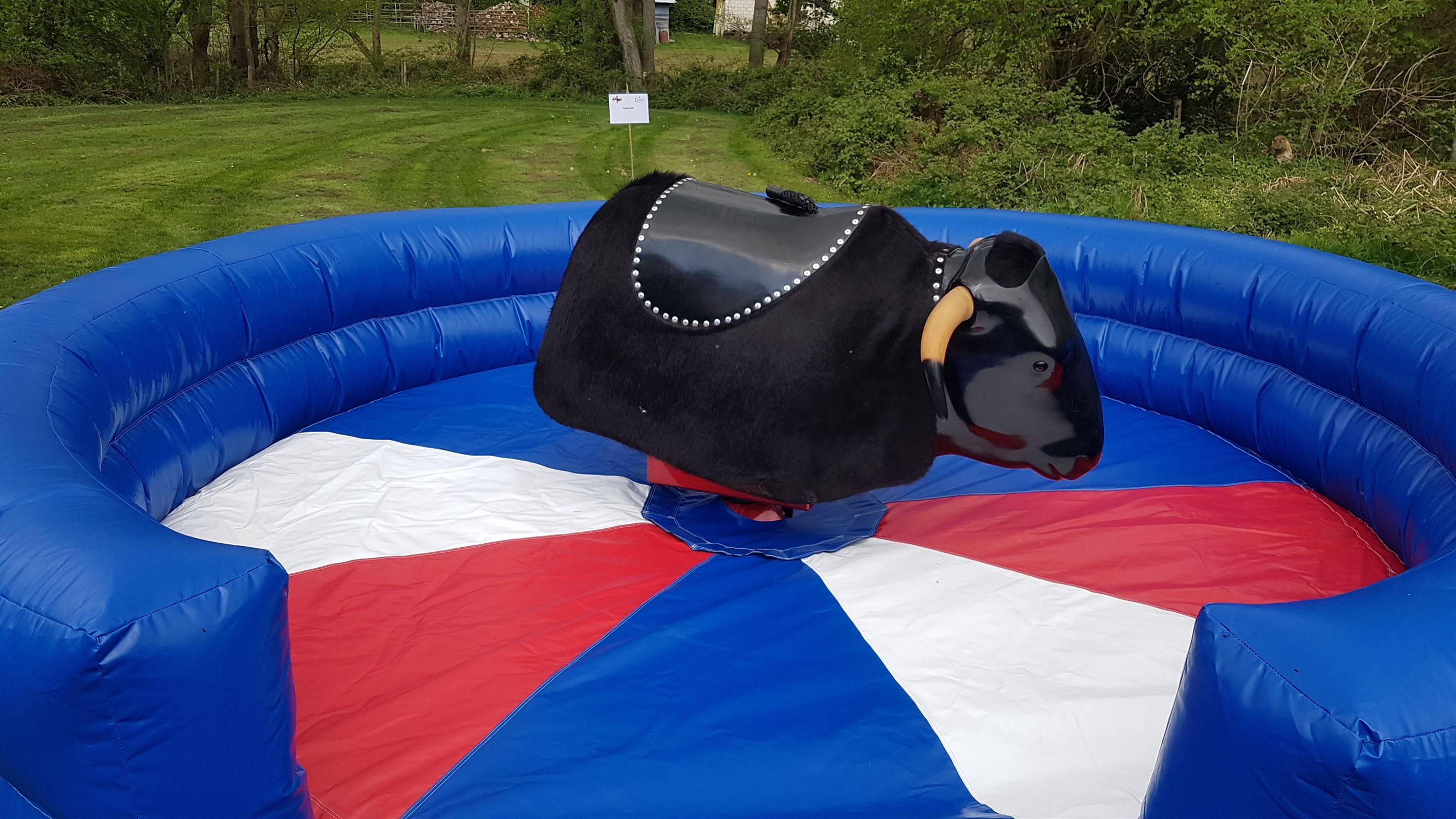 All Our Rodeo Rides Rodeo Bull Hire In Essex London