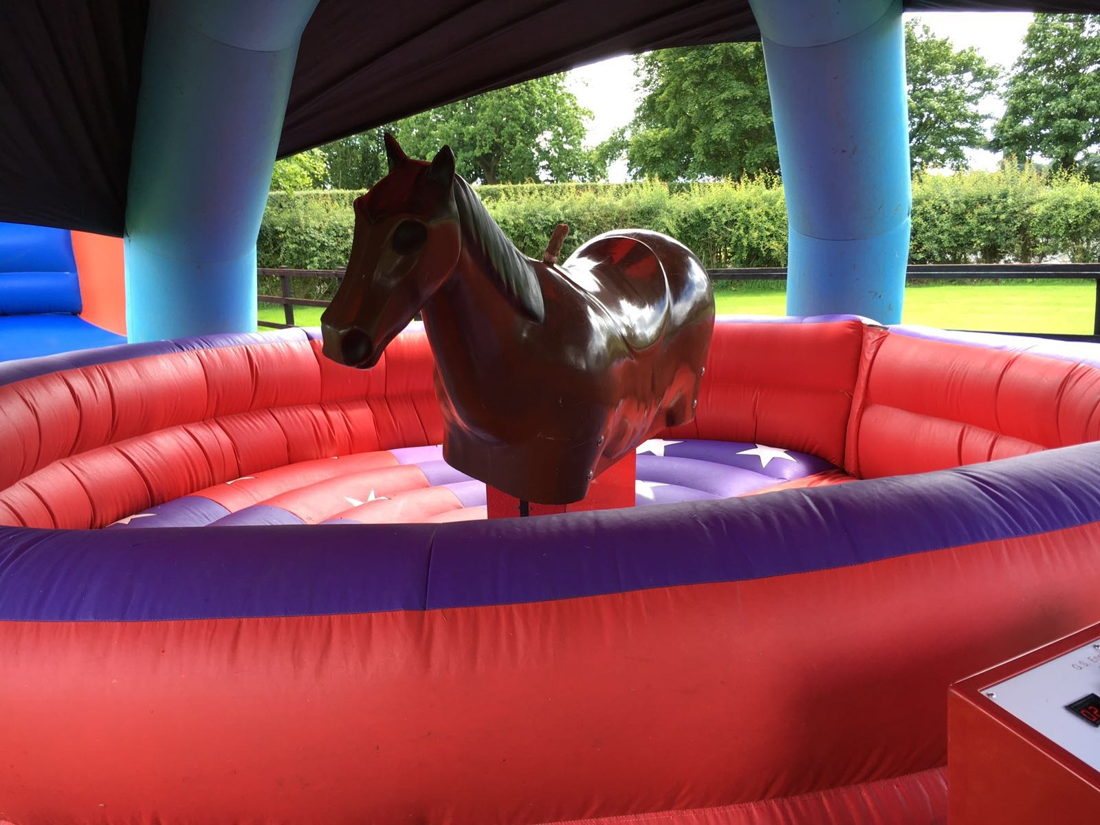Rodeo Horse Rodeo Bull Hire In Essex London Amp Nationwide