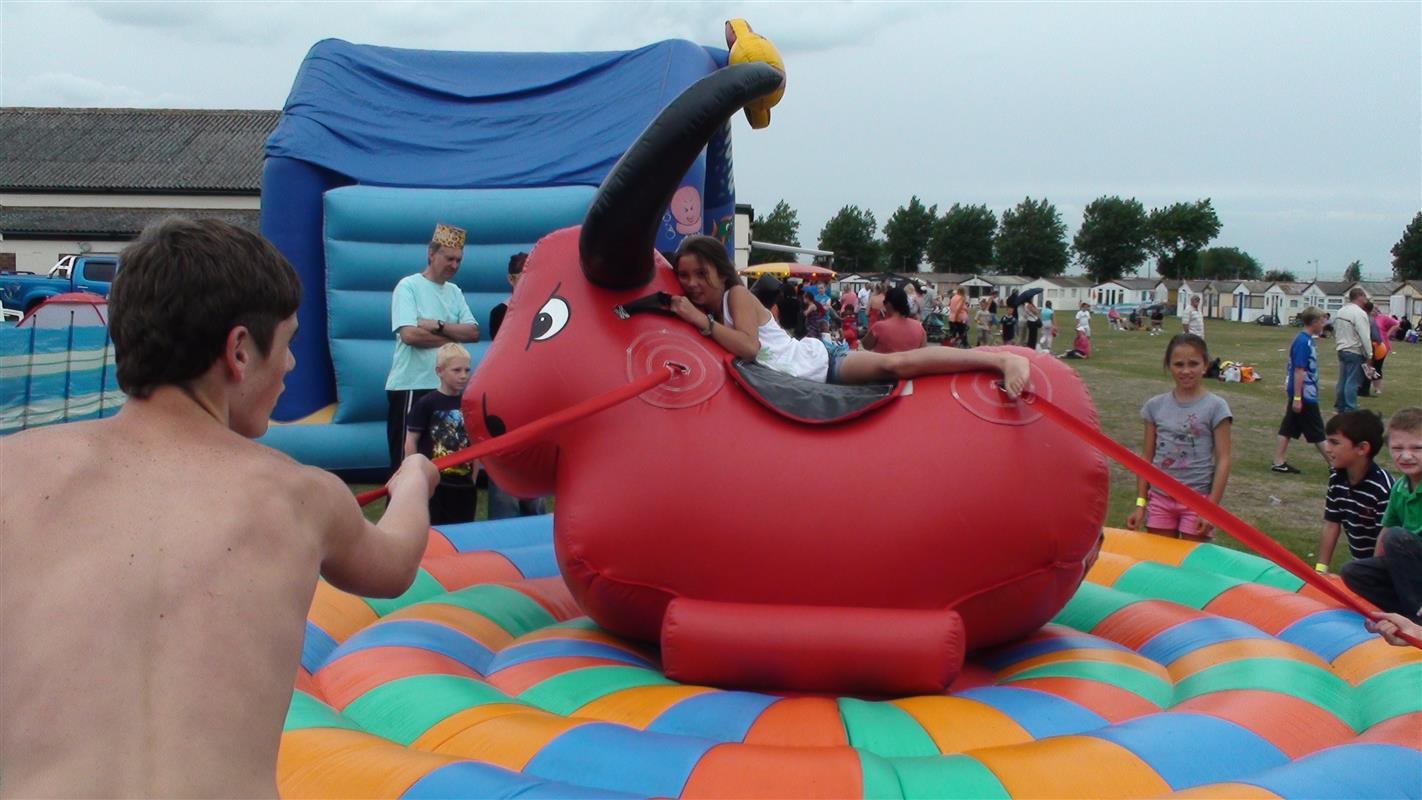 Inflatable Childrens Rodeo Bull Rodeo Bull Hire In Essex