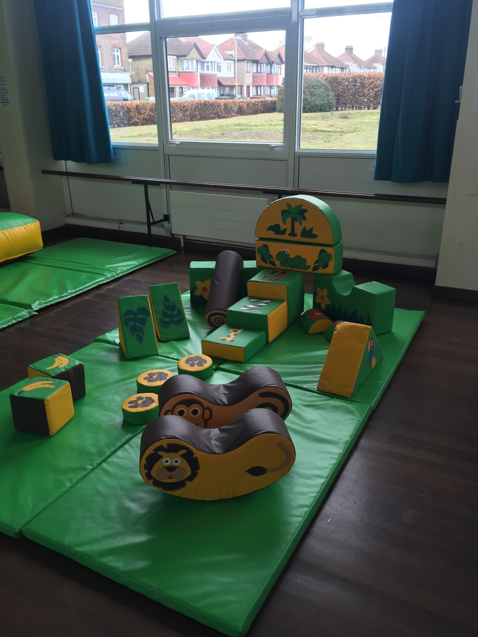 Jungle themed soft play ball pit package bouncy castle for Jungle themed playroom