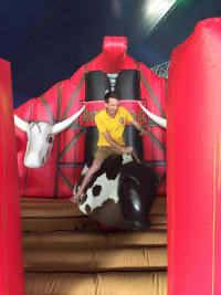 Rodeo Bull Deluxe