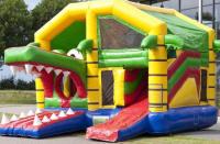 Children's Crocodile Activity Castle#It's Here Book Now
