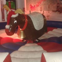 Rodeo Reindeer#inc Supervision for 3hrs