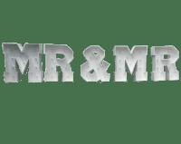 4ft Giant LED MR & MR Letters