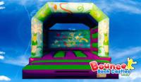 Celebration Party Adult Bouncy Castle
