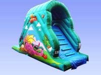 10ft*24ft*14ft Dragon Garden slide