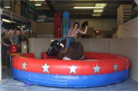 Rodeo Bull 3 Hour Party