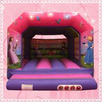 Large Princess Bouncy Castle #4m (W) x 4m (L) x 3m (H)