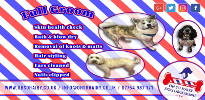 Mobile Dog Grooming In Crystal Palace Dulwich Bromley Croydon