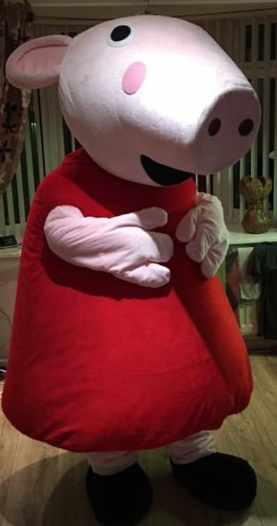 Peppa Pig Children S Party Organisers Mascot Hire In Mansfield